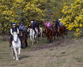 Burnelee Excursions on Horseback - Geraldton Accommodation