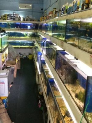 Clearwater Aquariums - Geraldton Accommodation