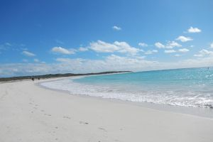 Shipwreck Special Nature Tour/Half Day Tour - Geraldton Accommodation